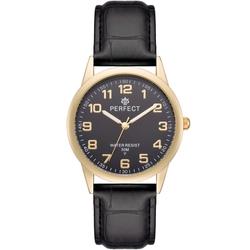 Часы наручные Perfect A4002N-242