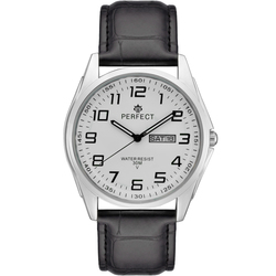 Часы наручные Perfect A4014B-154