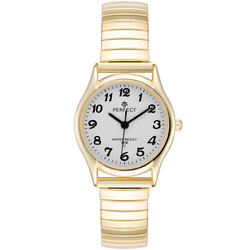Часы наручные Perfect X135-254