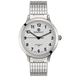 Часы наручные Perfect X207-154