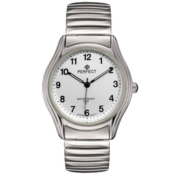 Часы наручные Perfect X241-114