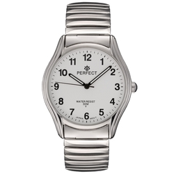 Часы наручные Perfect X241-154