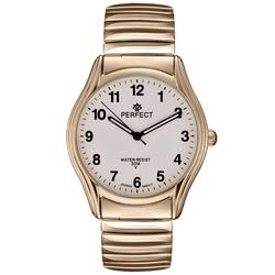 Часы наручные Perfect X241-254
