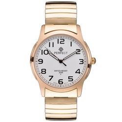Часы наручные Perfect X994G-254